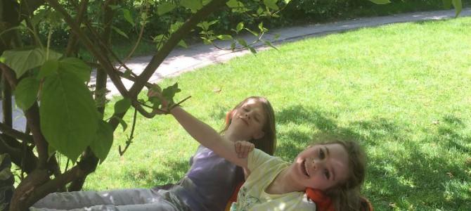 Gartenbesuch im Kindergarten